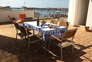 Haus mit 3 Zimmern, 1000 Meter bis zum Strand Mallorca
