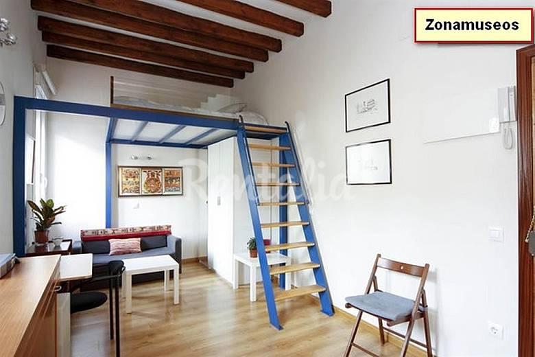 Apartamento en alquiler en madrid centro madrid madrid camino de santiago de madrid - Apartamentos madrid centro por dias ...