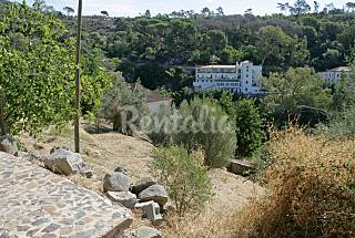House in the Algarve of Nature Algarve-Faro