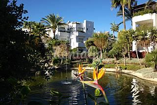 Amplio piso de lujo a 130m de la playa Málaga