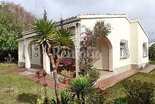 Casa para 8-10 personas a 200 m de la playa Alicante