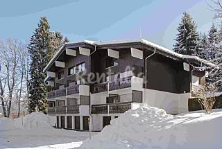 Large flat minutes from the slopes Upper Savoy