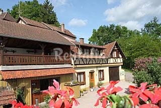 Maison de Vacances - Gite rural 3*  en Alsace  Bas-Rhin
