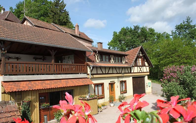 Holiday home Gite de France 3 * in Alsace Bas-Rhin - Outdoors