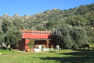 Villa de 1 habitaciones en Montánchez Cáceres