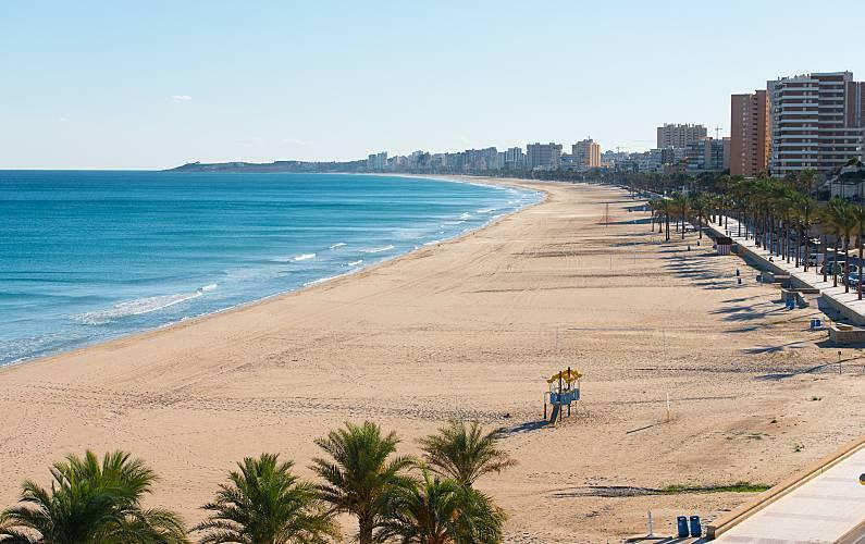 Resultado de imagen de costa de playa de san juan y campello