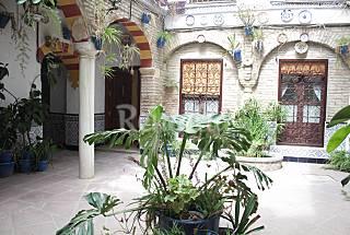 Apartamento en alquiler en Córdoba centro Córdoba