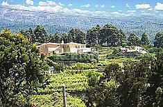 Appartement pour 4 personnes à Icod de los Vinos Ténériffe