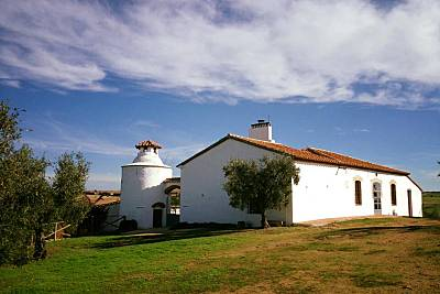 Casa para 8-10 personas en Azuaga Badajoz